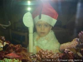 Weihnachtsmann Manuel